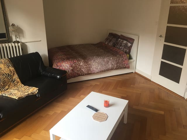 Jolie grande chambre avec balcons - Genève - Appartement