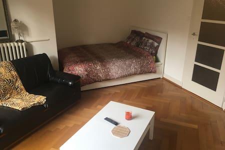 Jolie grande chambre avec balcons - Genève