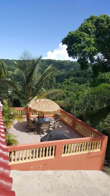 Embrace the tropics on the patio, wander the property freely and smell the flowers, check out the various fruits growing, and maybe spot Mr. Lizard in a tree top.