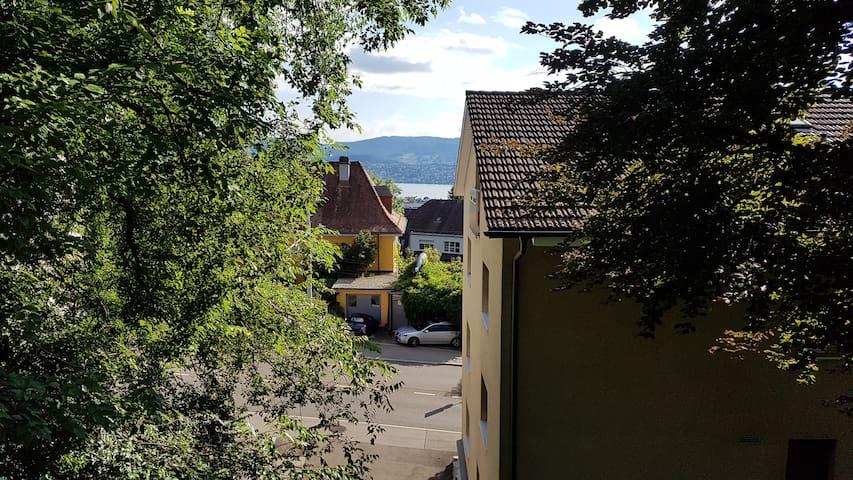 Balcony view -> lake of Zurich