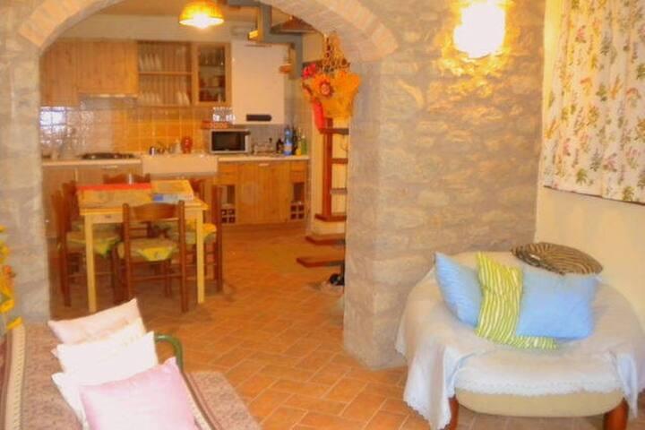 Delizioso terratetto  in pietra - Riolunato - Lägenhet