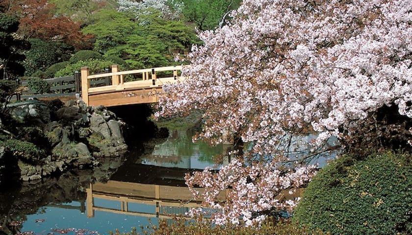 Let's enjoy Life Kabukicho shinjuku - 新宿区 - Leilighet