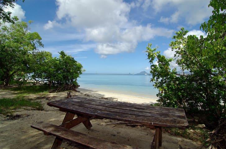 ❤Studio clim, jardin tropical, mer à 5 min
