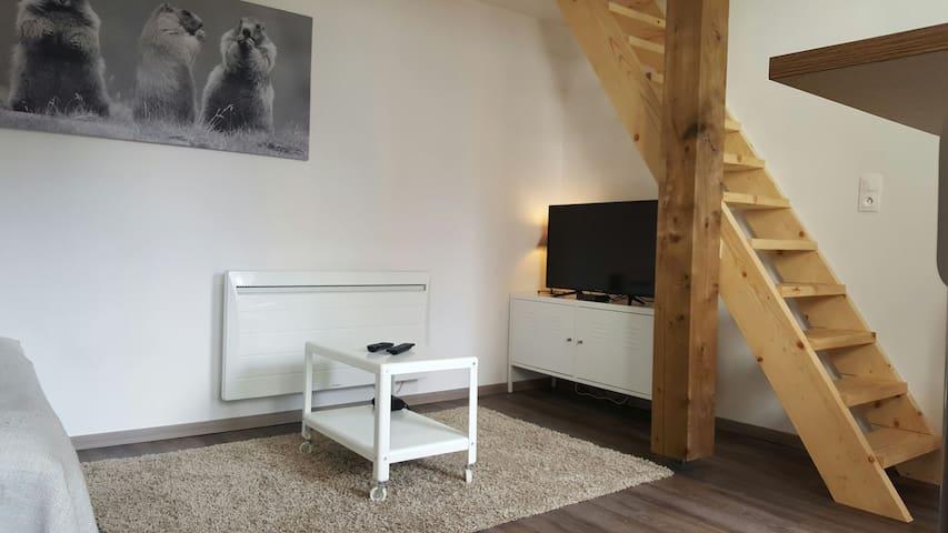 Appartement à 100 mètres du lac. - Gérardmer - Apartament