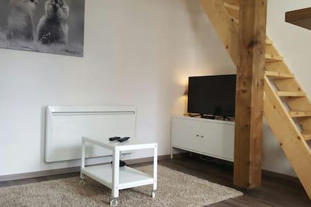 Appartement à 100 mètres du lac. - Gérardmer - Huoneisto