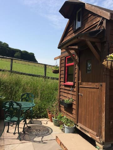 Tiny house in the Forest of Dean