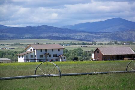 Amish Daily - Family Apartment