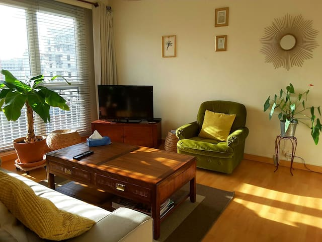 Charming and sunny one bedroom appartment - Nantes - Apartamento