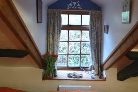 Cosy rooms, cottage, views, garden, rural Ceredion