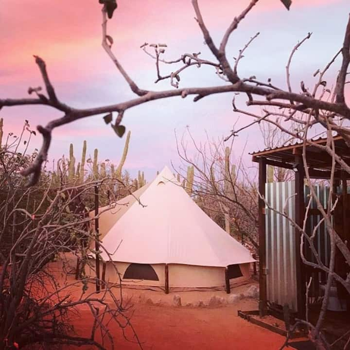 Wind Rider Club Glamping Resort