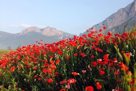 Escape in the Pyrenees - Peramola - เกสต์เฮาส์