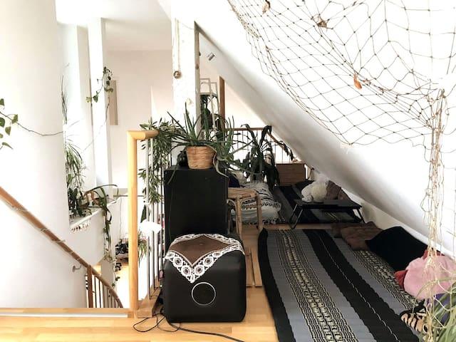 Exclusive roof-top appartement