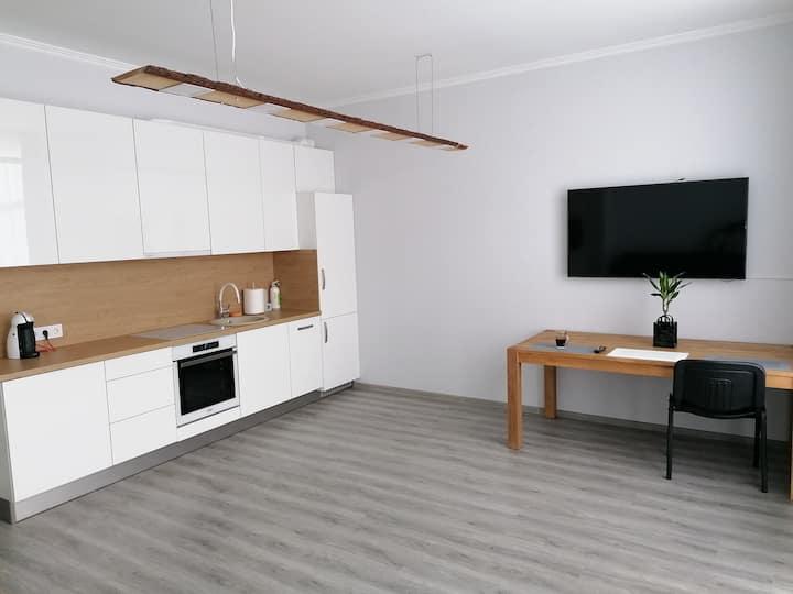 Palm apartment studio Riga