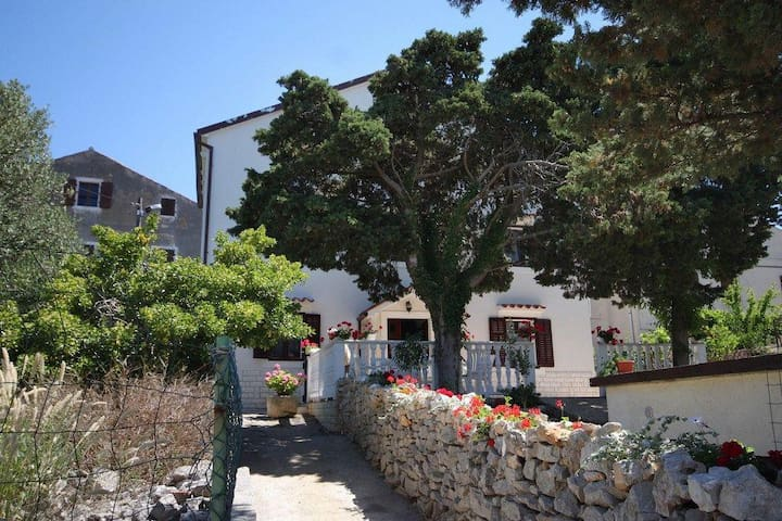 One bedroom apartment Ćunski, Lošinj (A-2498-a) - Ćunski - Appartement