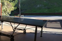 Ping Pong table in the garage