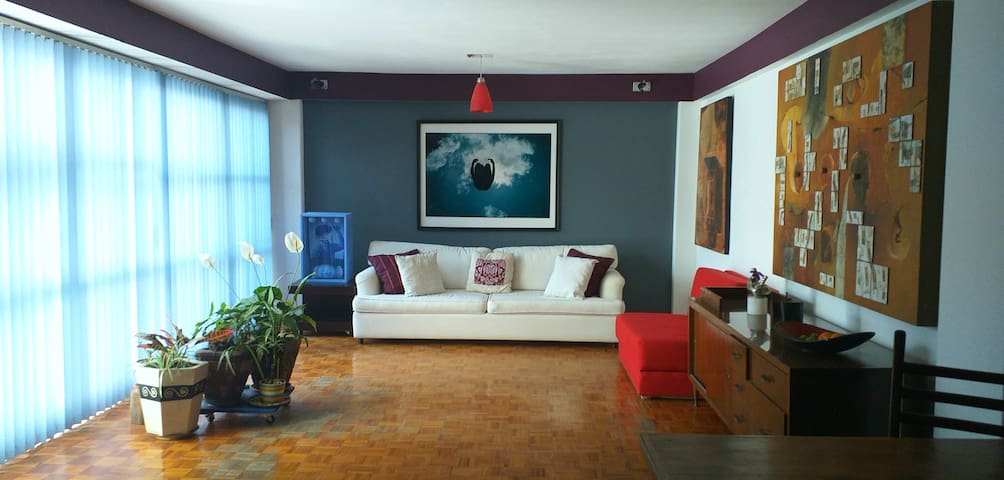 Roma norte, cozy, artistic, spacious apartment.
