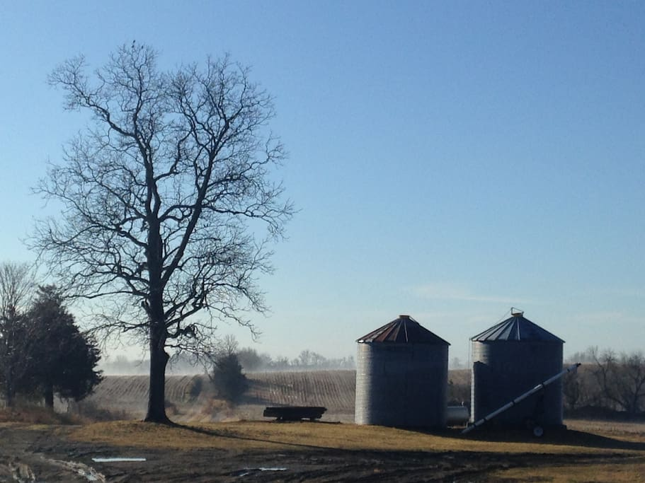 A beautiful fall morning on our farm
