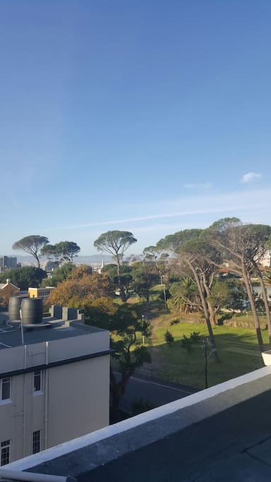 Balcony with views of cape town and De Waal park