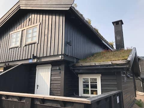 Udoban kabina centralno smješten u prekrasnom Fageråsen u Trysil.
