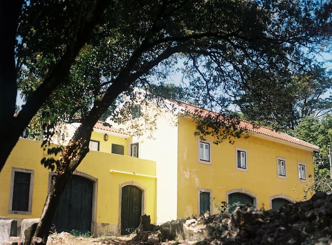 The Five House - Red umbrella charming room - Sintra - Bed & Breakfast