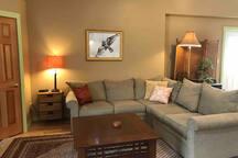 Living room hangout spot.