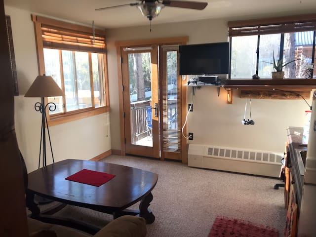 Cozy Studio located in the town of Telluride