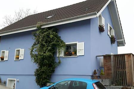 Gemütliches Zimmer im blauen Haus - Biel-Benken - Leilighet