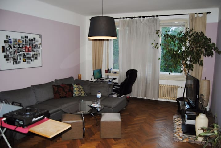 Sunny apartment in the city center