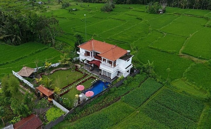 Super tranquil cottage in middle of padi terraces