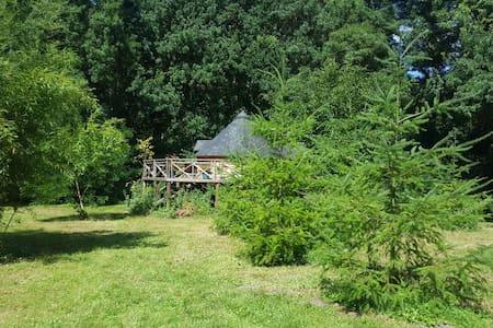 Cabane sur pilotis en forêt - Seiches-sur-le-Loir - Cabin