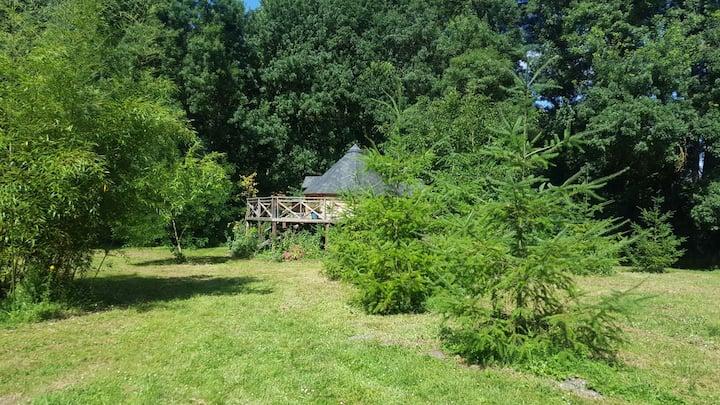 Cabane sur pilotis en forêt