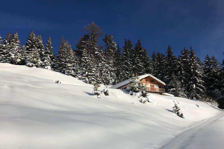 Chalet ,confort et nature, jacuzzi extérieur!