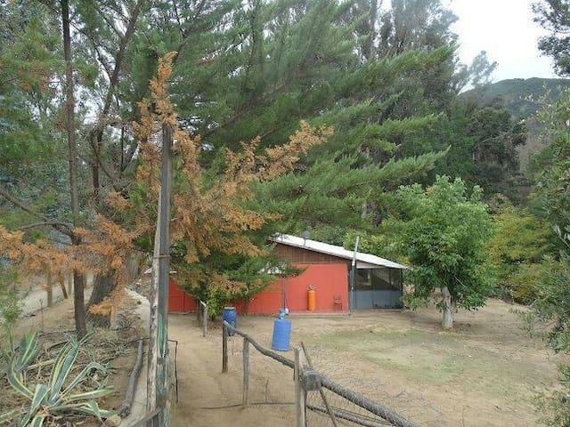 Casa ubicada en parque ecológico - Curacavi  Chile  - Oda + Kahvaltı