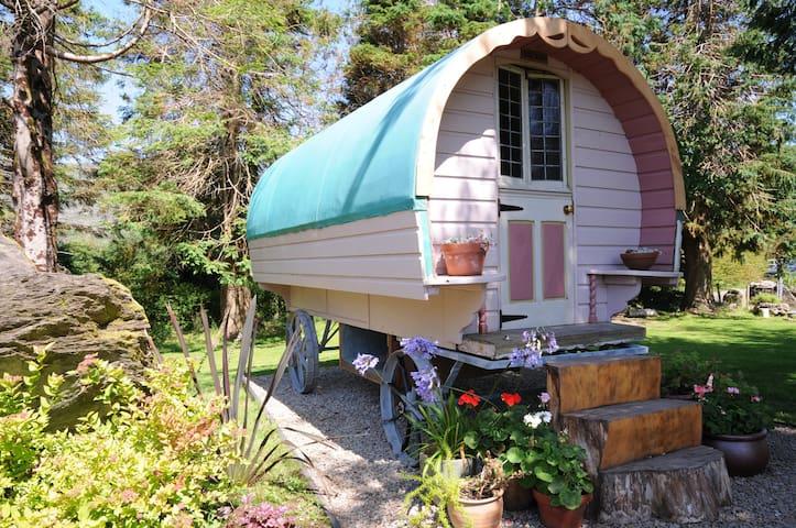 Chez Shea Gypsy Wagon- - Lauragh - Annat