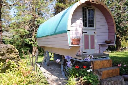 Chez Shea Gypsy Wagon- - Lauragh - Άλλο