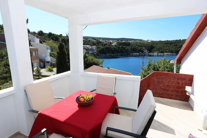Sea view apartment Kolic  in Savar, Dugi otok - Savar - Apartment