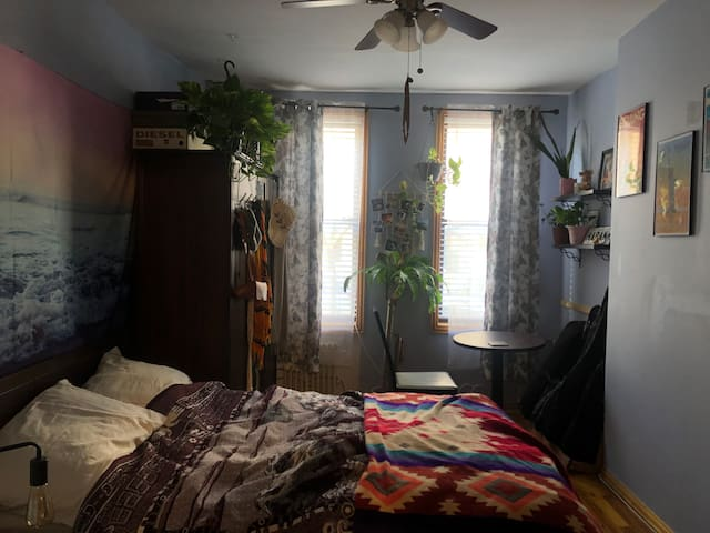 1 Bedroom apartment in Bushwick, Brooklyn