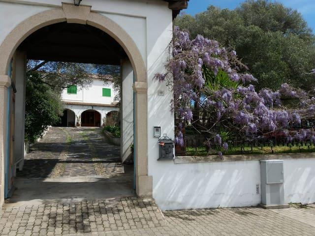 Villa Carmen, Camera VERDE