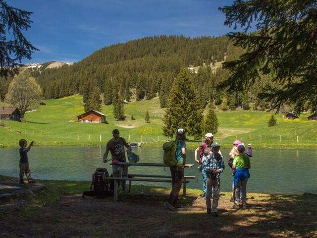 Bidmi See / Lake Bidmi