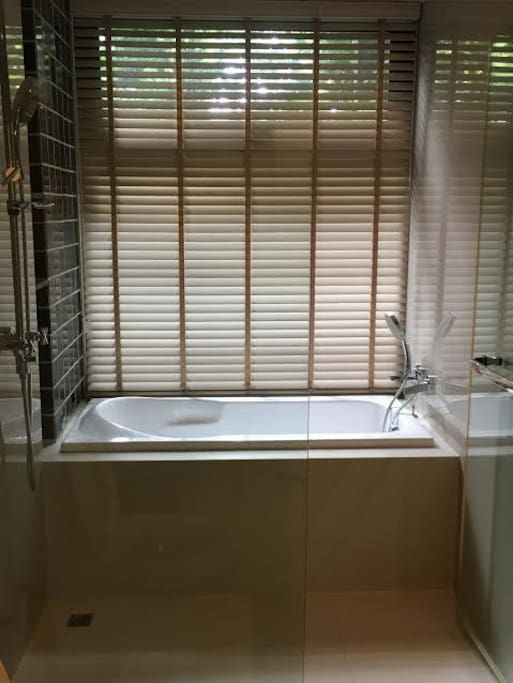 Bathroom with Standing Shower and Bathtub