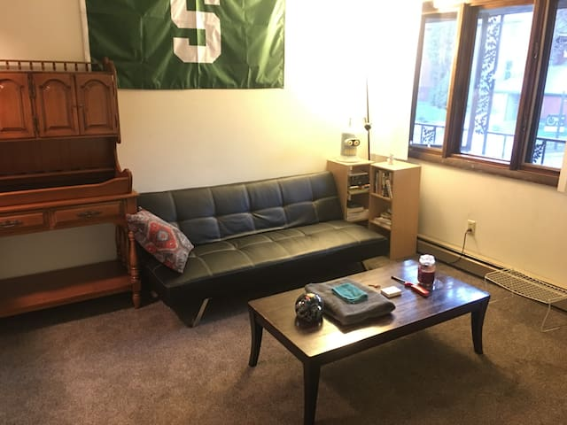 Cozy Entire Apartment -Downtown East Lansing - East Lansing - Flat