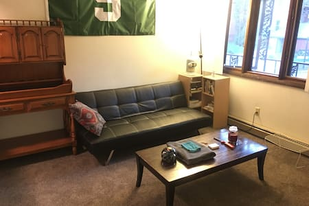 Cozy Entire Apartment - 1 Bedroom Near Downtown EL - East Lansing