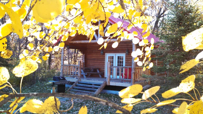 Andrew's Cabin near Sheyenne National Grasslands