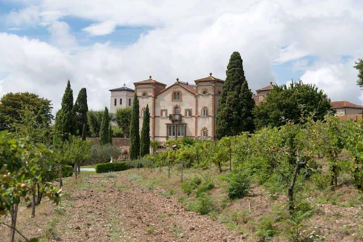 Château de Villardonnel - Villardonnel - Hrad