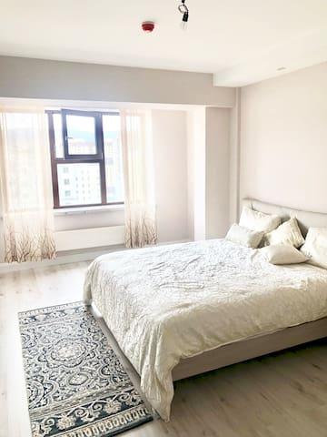 Luxurious Private 1 bedroom 1 bathroom Apartment