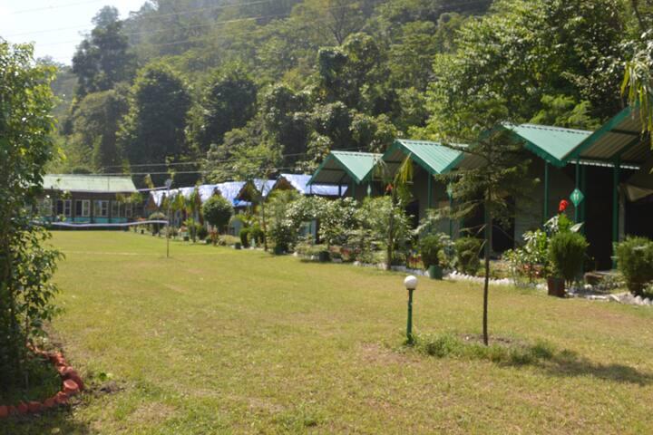 Shivasheesh Forest Camp Rishikesh