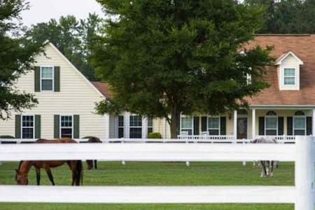 Farm stay: Queen+double bed room