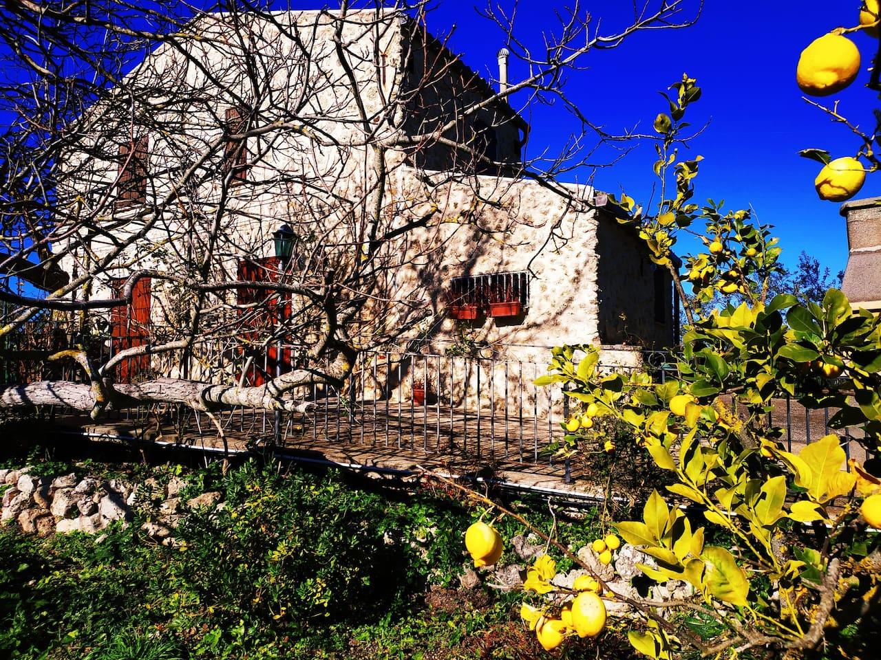 Immersa nel verde, soleggiata, tranquilla. La Casa Vacanze Rahalmaut è una casa bucolica ideale per le tue vacanze in Sicilia