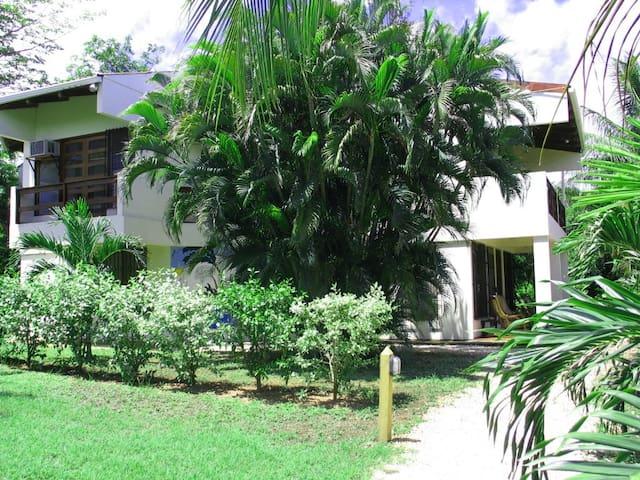 7 bedroom villa with staff, Playa del Coco