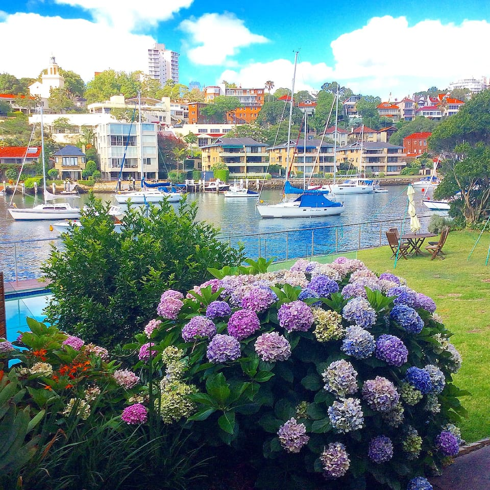 Stunning private backyard right on the harbour.